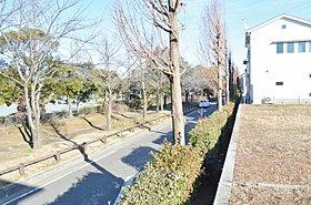 現地から大塚山公園を望む!