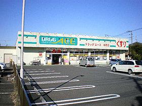 ドラッグエース本町店