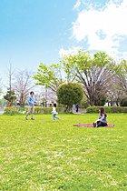 桜や緑を楽しめる堀崎中央公園(20m)