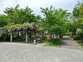 桂台第5公園