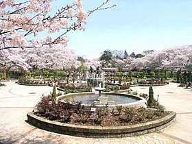 近くの須和田公園です。