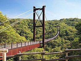 星のブランコは日本一長いつり橋です!