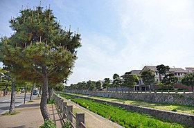 芦屋川畔を散歩。