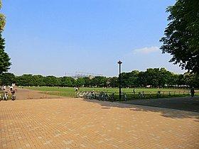 【光が丘公園】徒歩8分(約600m)。広大な公園です。