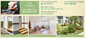 For Hobby