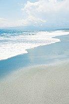 照ヶ先海岸《こゆるぎの浜》(徒歩2分)