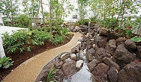 緑や水、光や風、鳥や虫といった自然と触れ合える路庭の魅力