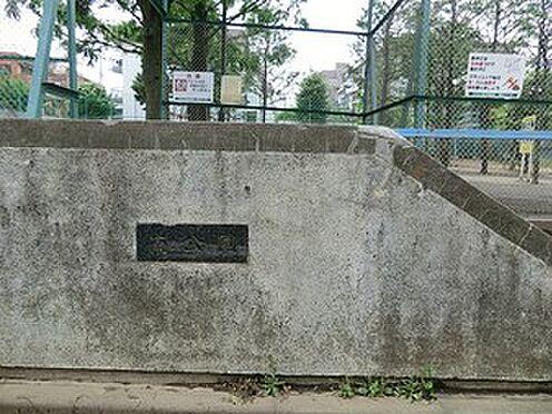 マンション(建物全部)-世田谷区経堂2丁目 周辺環境:南公園