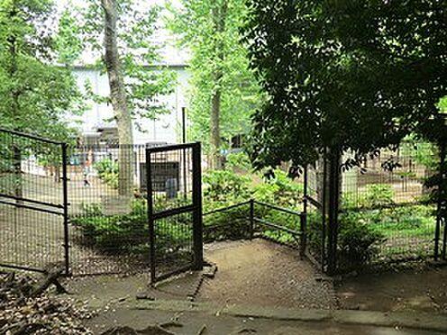 マンション(建物一部)-渋谷区恵比寿西1丁目 氷川の杜公園
