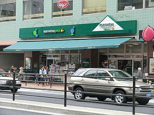 マンション(建物全部)-港区白金台4丁目 周辺環境:マルエツ白金台店