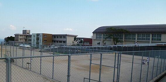 マンション(建物全部)-大津市和邇中浜 大津市立志賀中学校まで2321m