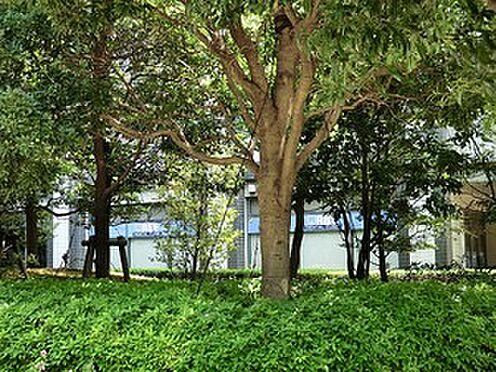 マンション(建物一部)-港区東新橋1丁目 周辺環境:新東京クリニック