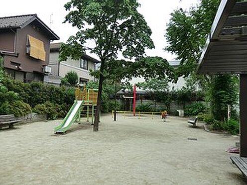 マンション(建物全部)-杉並区成田東4丁目 周辺環境:松ノ木公園