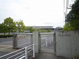石畳小学校(800m)