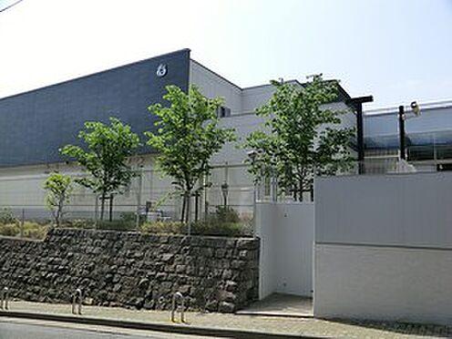マンション(建物全部)-渋谷区東4丁目 周辺環境:若葉会幼稚園