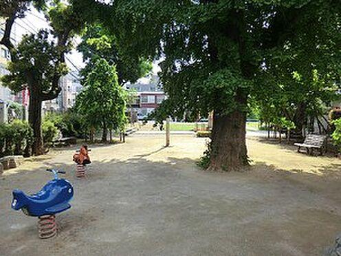 マンション(建物全部)-文京区白山5丁目 周辺環境:大観音児童遊園