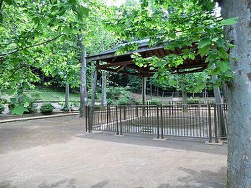マンション(建物全部)-渋谷区東4丁目 周辺環境:氷川の杜公園