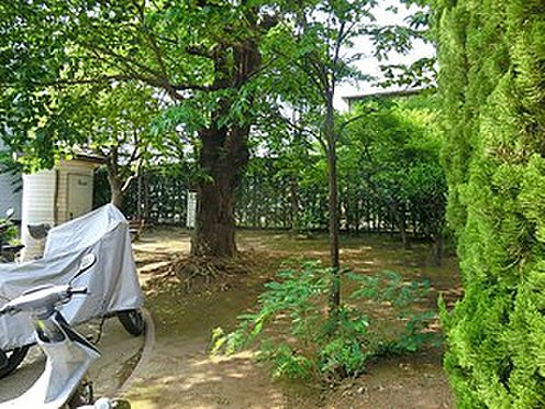 マンション(建物全部)-大田区池上7丁目 つきやま公園