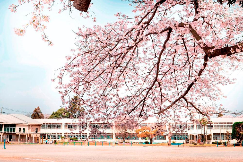 市立田中小学校 約1,510m(徒歩19分・自転車7分)