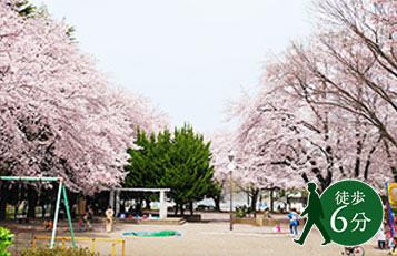 松が枝公園 約440m(徒歩6分)