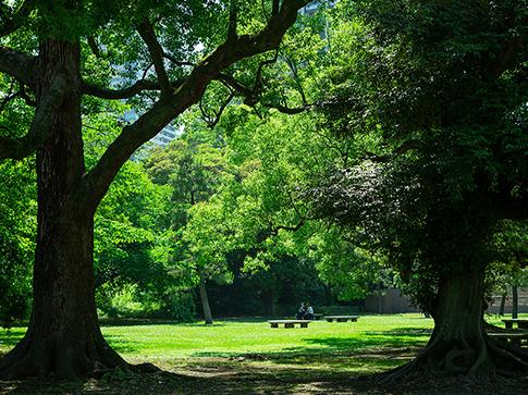 浜離宮恩賜庭園 約1,490m(徒歩19分)