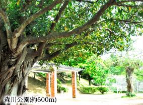 森川公園 約600m(徒歩8分)