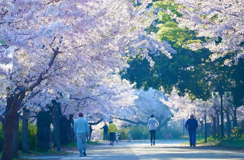 大阪城公園 約1,200m(徒歩15分)