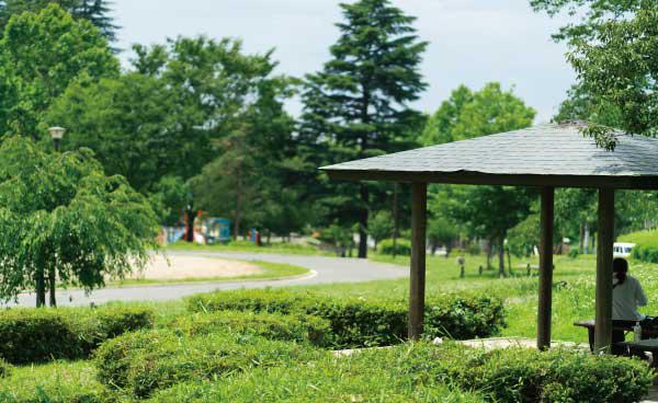 美しが丘公園 約480m(徒歩6分)