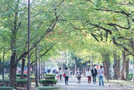 大通り公園 約180m(徒歩3分)