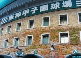 阪神甲子園球場 約930m(徒歩12分)