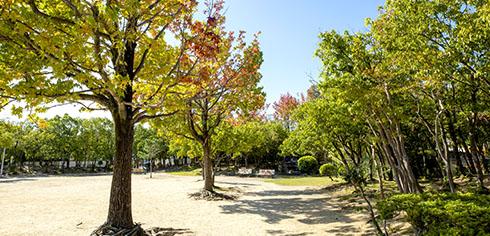 楠葉中央公園 約380m(徒歩5分)