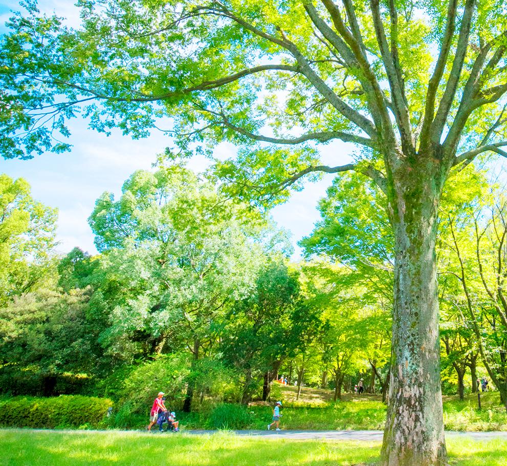 昭和記念公園 約1,160m(徒歩15分)