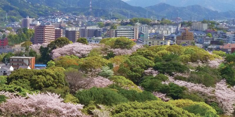 皇后崎公園 約80m(徒歩1分)