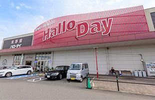 ハローデイ井堀店 約370m(徒歩5分)