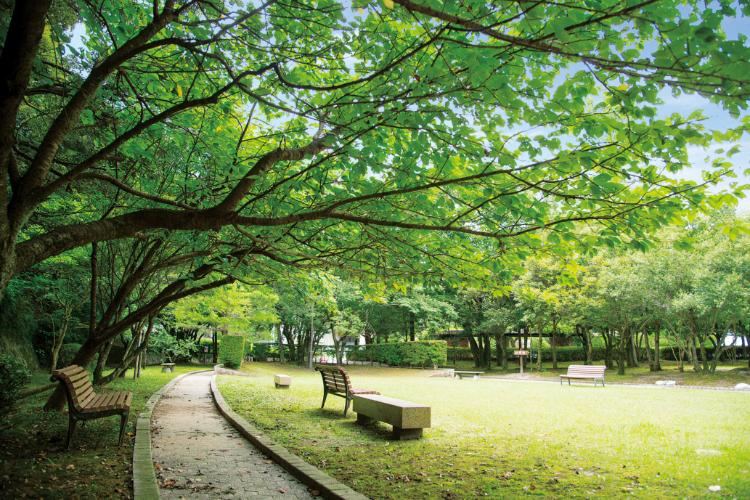 亀山公園 約560m(徒歩7分)