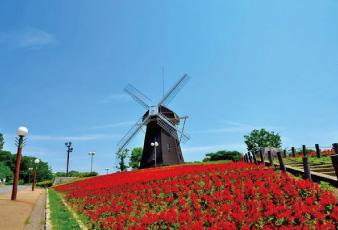 鶴見緑地公園 約1,950m(自転車10分※公園北西口まで)