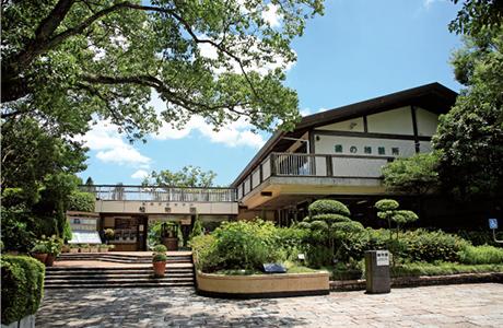 福岡市動植物園 約480m(徒歩6分)