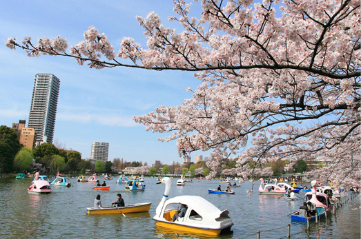 上野恩賜公園(クジラ口) 約1,490m(自転車6分・徒歩19分)