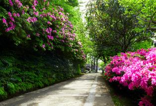 赤羽緑道公園 約910m(徒歩12分)