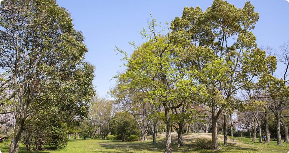 はぎのき公園 約330m(徒歩5分)