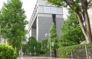本マンション周辺の並木道 約30m(徒歩1分)(2016年10月撮影)
