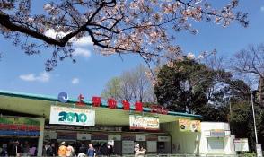 上野動物園 約1,640m(徒歩21分)