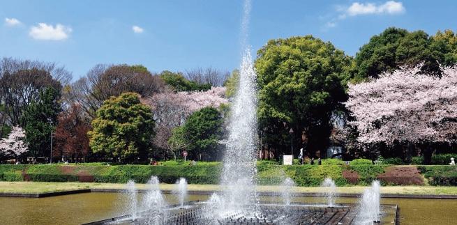 上野恩賜公園 約1,050m(徒歩14分)