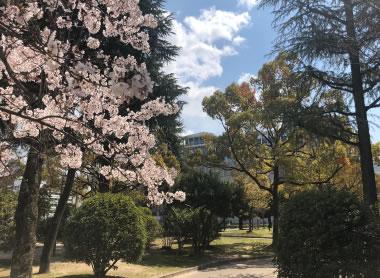 中央公園 約150m(徒歩2分)