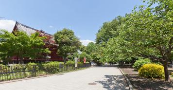 上野恩賜公園 約1,370m(徒歩18分)