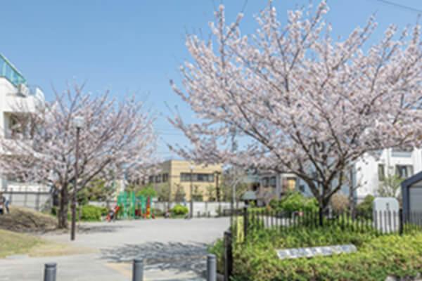 栄町ふれあい公園 約340m(徒歩5分)