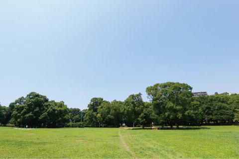県立行田公園 約1,480m(徒歩19分)