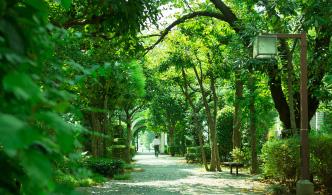 浜町緑道 約130m(徒歩2分)