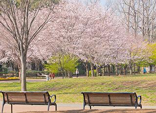 西東京いこいの森公園 約720m(徒歩9分)