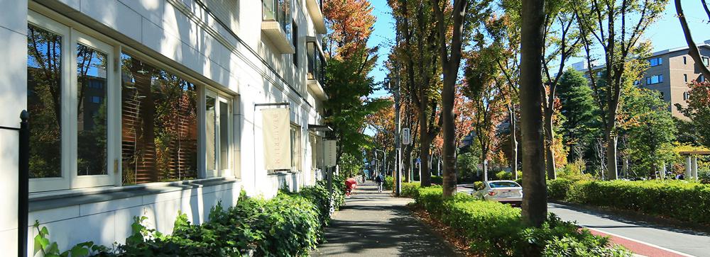 現地周辺の街並み 約270m(徒歩4分)(2012年11月撮影)
